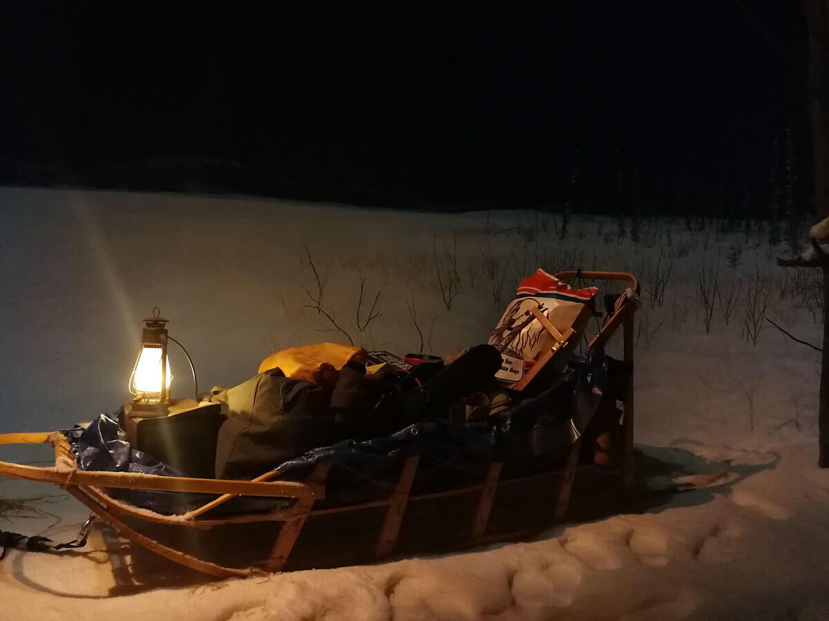 dog sled in Arctic environment museum exhibit