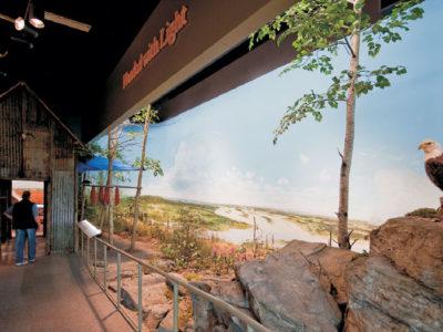 Interior exhibit with eagle